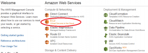 AWS EC2 Service Option