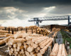 You don't have to know everything about the lumber industry to trade it.