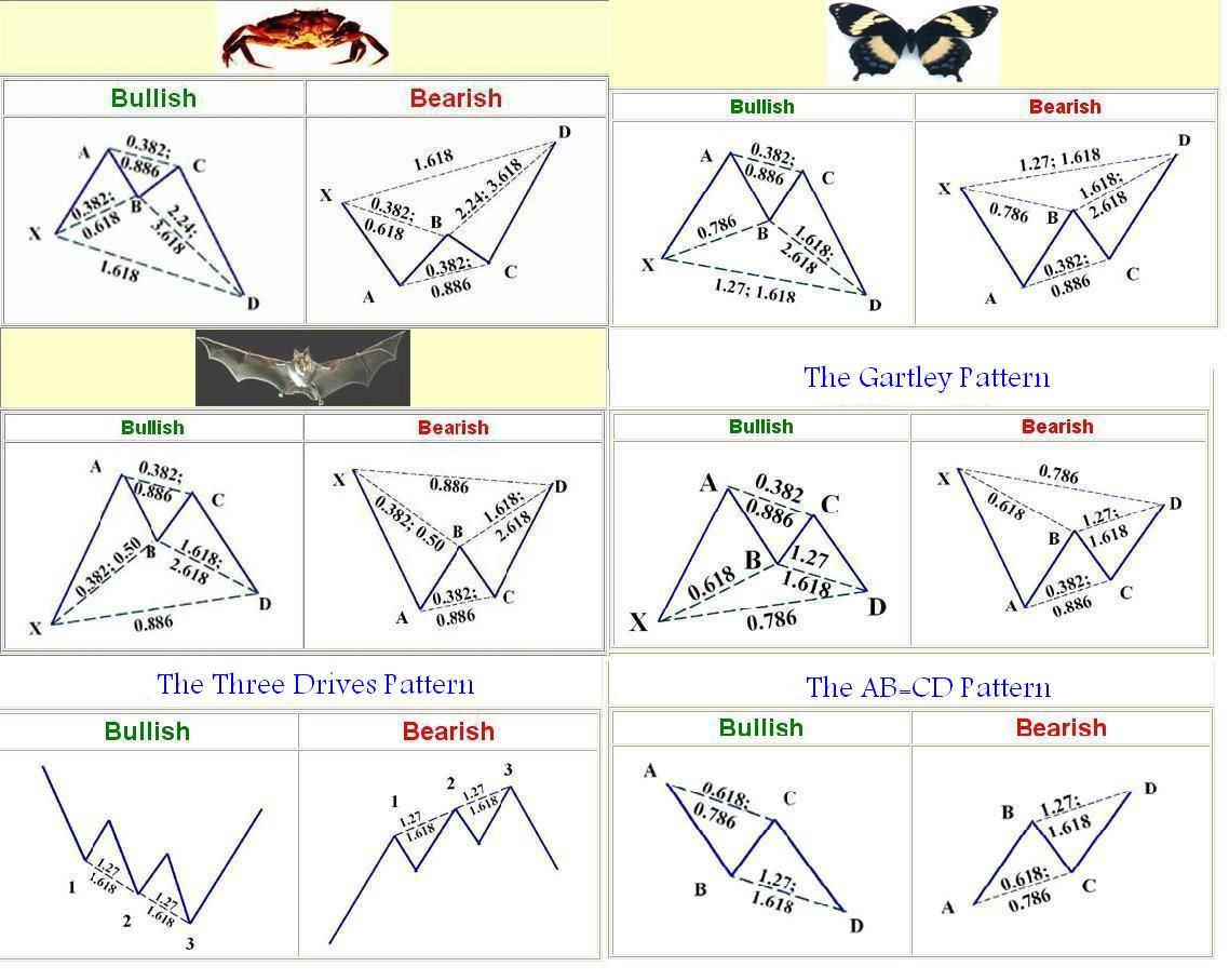 Harmonic patterns in forex trading